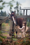 Girl feeding her horse. Cute girl feeding her horse in paddock Royalty Free Stock Image