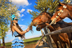 Girl feeding her horses Royalty Free Stock Photography