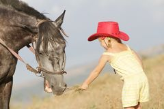 Girl feeding a horse on farm outdoors Royalty Free Stock Photos