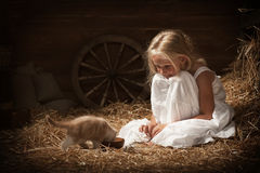 Girl feeding a kitten milk. Little girl feeding a kitten milk in barn Stock Photos