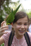 Girl feeding parrots  Royalty Free Stock Image