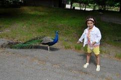 Beautiful Girl and Bird Stock Images