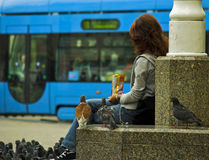 Girl Feeding A Pidgeons. Young girl feeding a pidgeons at main square of Zagreb, Croatia. Characteristic blue train in blured background Royalty Free Stock Photo