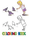 Girl feeding pigeons. Coloring book Royalty Free Stock Images