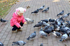 Girl feeding pigeons. Little girl four years in a pink jacket and hat with pompoms feeding birds (pigeons) bread in a city park in autumn Stock Photography