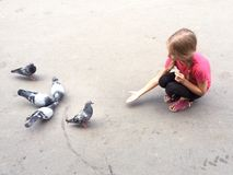 Girl feeding the pigeons Royalty Free Stock Photos
