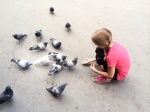 Girl feeding the pigeons Stock Photos