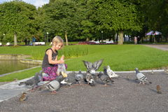 A girl is feeding the pigeons in the park. Stock Images