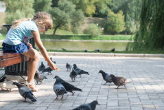 Girl feeding pigeons in the park. Little girl on a summer day in the park feeding pigeons at the Novodevichy Convent Royalty Free Stock Image