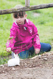 Girl feeding rabbit in enclosure Royalty Free Stock Photography