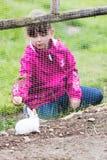 Girl feeding rabbit in enclosure Royalty Free Stock Photography