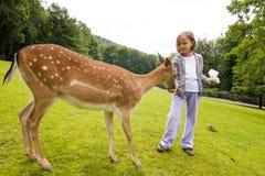 Girl Feeding Roe Stock Images