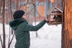Girl feeding squirrel in the winter forest. Teen girl feeds the birds and squirrels in the winter forest Stock Photos