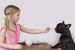 Free Girl Feeding The Dog Cereal With A Spoon Royalty Free Stock Photos - 202448558
