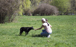 The girl feeds the black dog. Young mother with her son helps homeless dog in the park Royalty Free Stock Photos