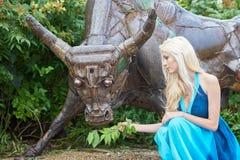Girl feeds the bull Stock Images