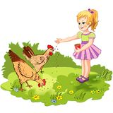 Girl feeding chickens. The girl feeds the chickens on a green lawn. Vector illustration stock illustration