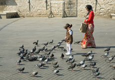 Girl feeds doves on old square Stock Image