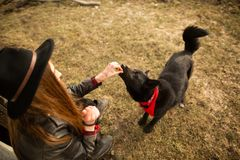 Girl feeds her black dog Brovko Vivchar in fron of old wooden house.  stock photos