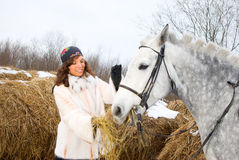 The Girl feeds the horse. Stock Photography
