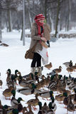 Girl feeds a lot of ducks. A lot of hungry ducks wintering Royalty Free Stock Photo