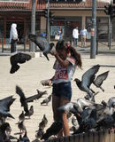 Girl feeds the pigeons Royalty Free Stock Photos