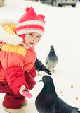 The girl feeds pigeons. Stock Image