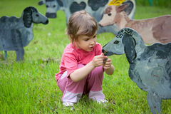 The girl feeds wooden sheep. Summer Royalty Free Stock Image