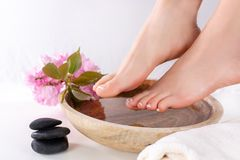 Girl Feet With French Pedicure In Wooden Bowl With Water And Decorative Pink Flower In Beauty And Spa Studio. Feet Fetish Royalty Free Stock Photos