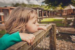 Girl on the fence Stock Image