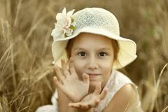 Girl in fied Royalty Free Stock Photo
