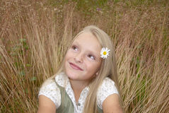 Girl in the field. Beautiful small girl with daisy sitting in the field stock photos