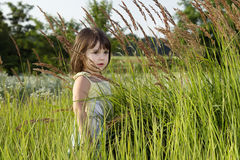 Girl on the field. A girl on the field standing in the high grass Royalty Free Stock Images