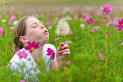 Girl in a field Stock Photography
