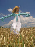 Girl in field. Field of Wheat stock image