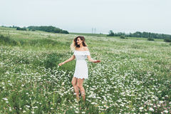 A girl in a field of chamomiles Stock Photos