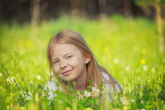 Girl on the field Royalty Free Stock Image