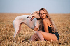 Girl in a field with a dog. Young beautiful girl in sunglasses posing and walking with a dog Royalty Free Stock Photography