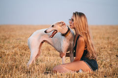 Girl in a field with a dog. Young beautiful girl in sunglasses posing and walking with a dog Stock Photo