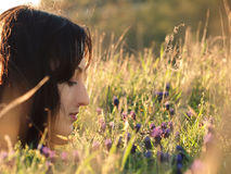 Girl in a field of flowers. Stock Images