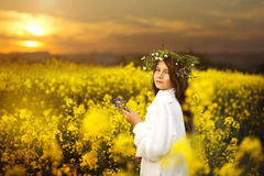 Girl in the field of gold Stock Image