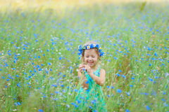 Girl in a field holding a bouquet of blue flowers Stock Photos