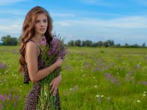 Girl in a field with lavender flowers in her hands. royalty free stock photo