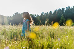 Girl in Field Royalty Free Stock Images