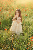 Girl on the field with poppies Royalty Free Stock Image