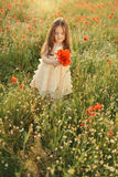 Girl on the field with poppies Royalty Free Stock Photos