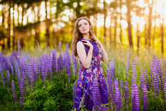 Girl in field of purple wildflowers, sunset on Sunny day Royalty Free Stock Image