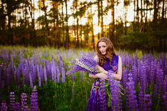 Girl in field of purple wildflowers, sunset on Sunny day Royalty Free Stock Images