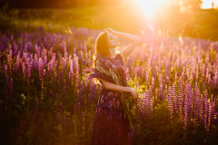 Girl in field of purple wildflowers, sunset on Sunny day Stock Images