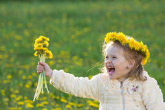 The girl in the field. The small laughing girl in the field with dandelions in a wreath Stock Images